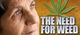 Ten, no, Eleven Facts Seniors Should Know About Marijuana.